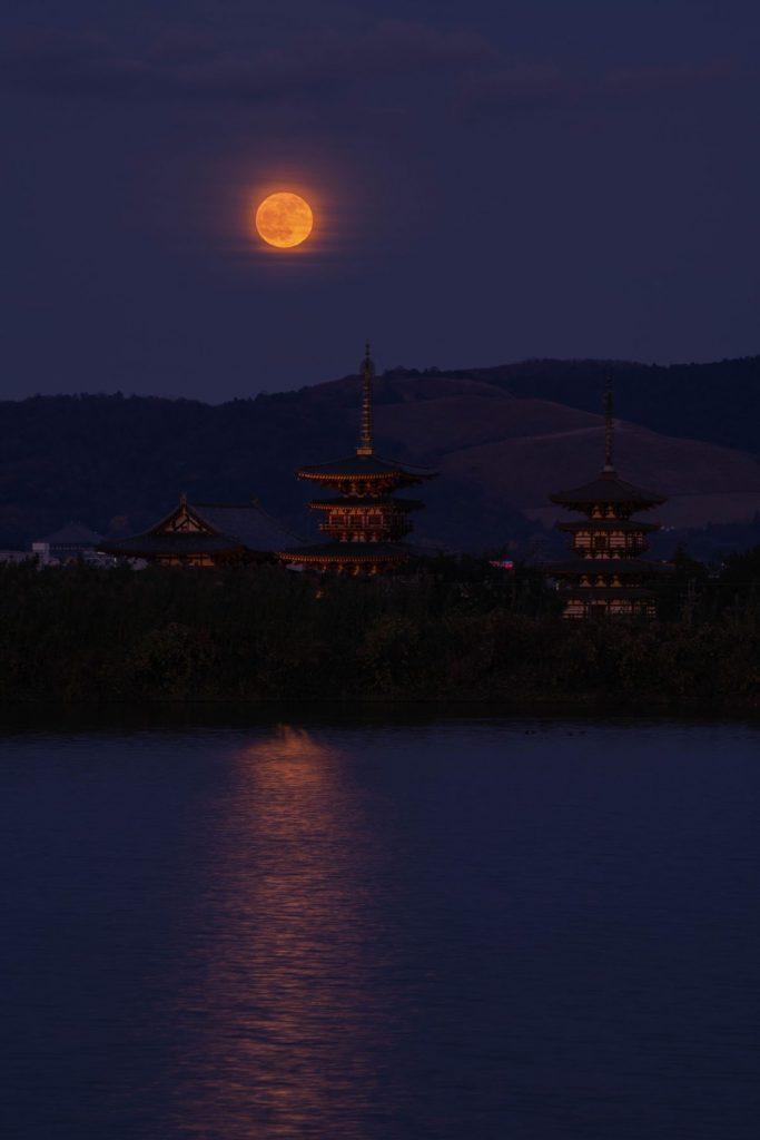 奈良県奈良市西ノ京町薬師寺